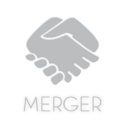 Business Merger Search